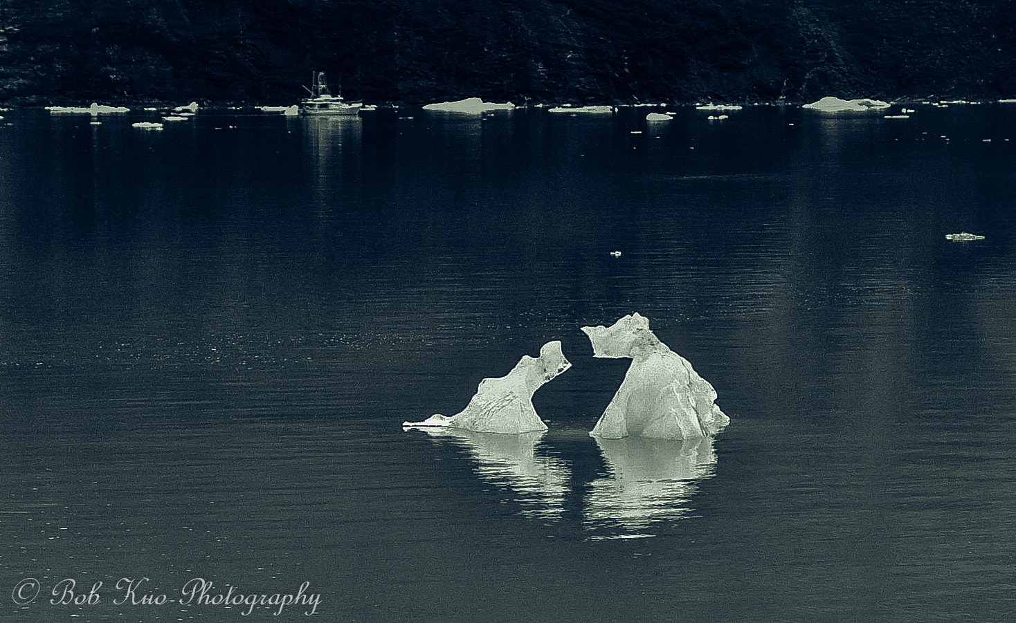 Photograph Conversation in ice by Bob Kuo on 500px