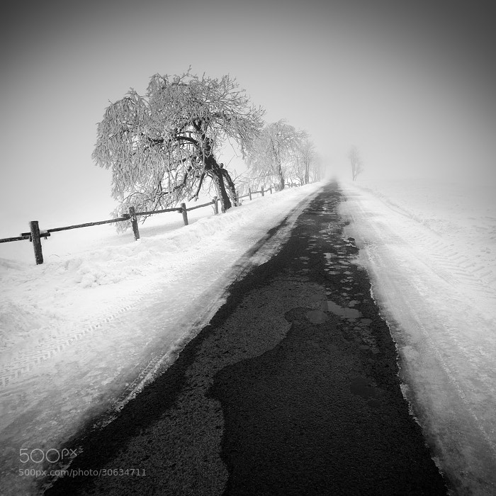 Photograph Winter in the Ore mountains III by Daniel Řeřicha on 500px