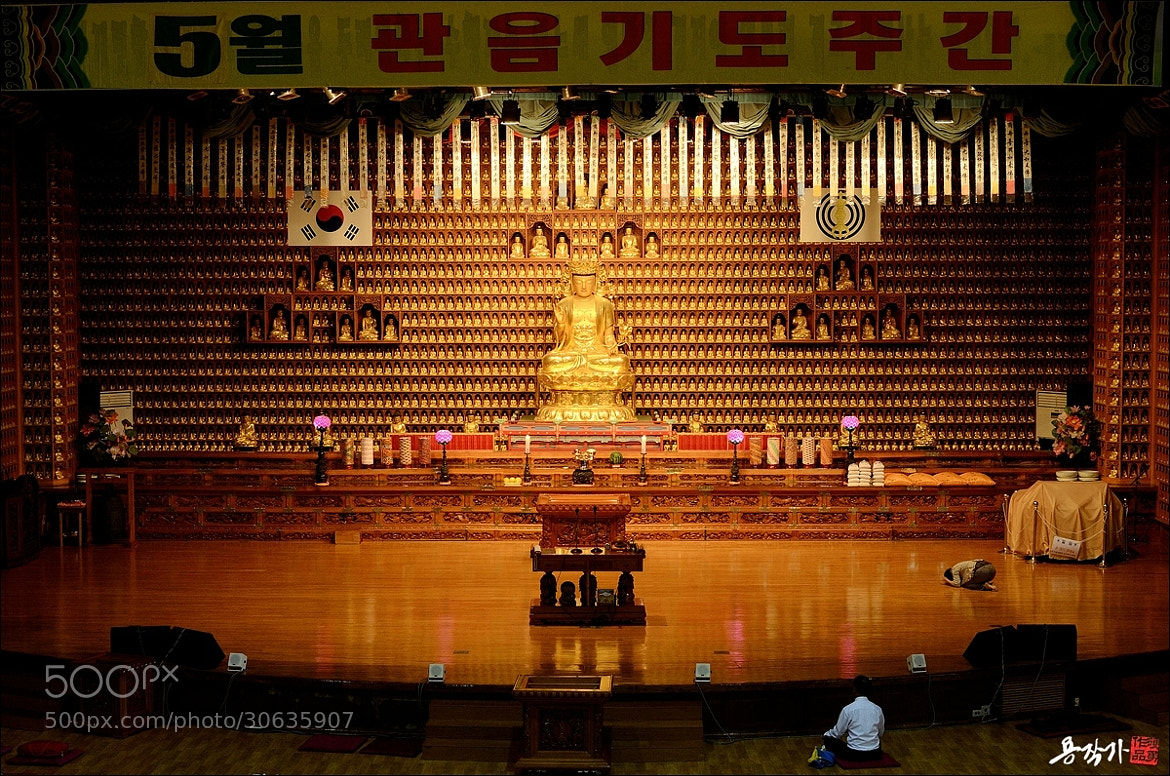 Photograph 간절한 기도 by Photographer YonG on 500px