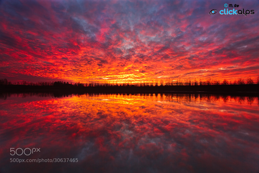 Photograph Red explosion by Matteo Re on 500px