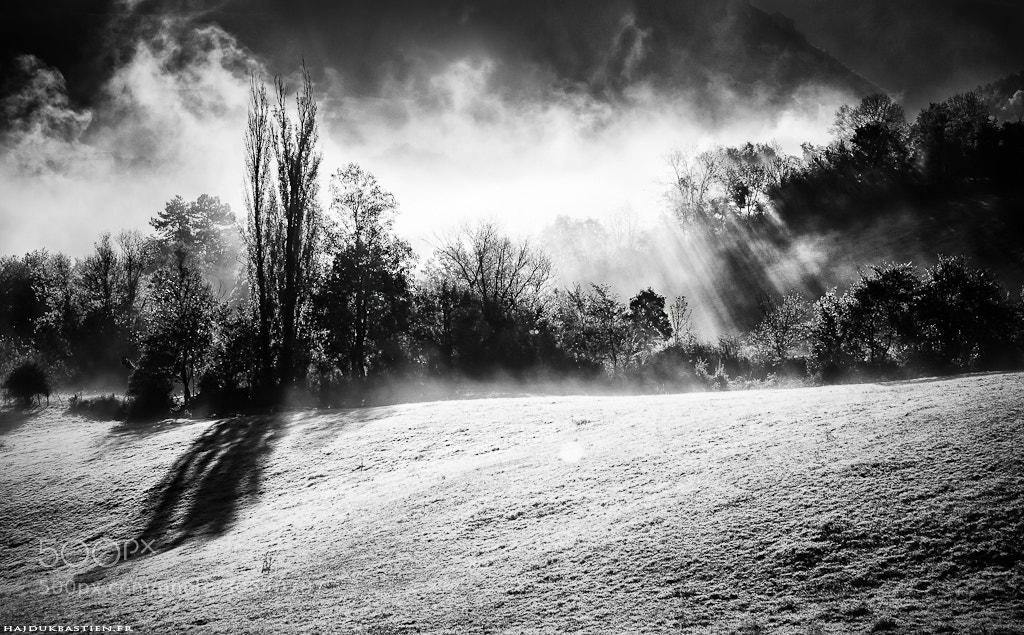 Photograph Misty by Bastien HAJDUK on 500px