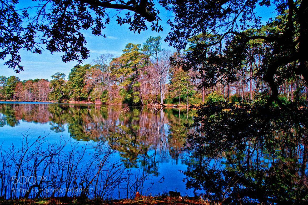Photograph Reflections in Mirror Lake by James Gramm on 500px