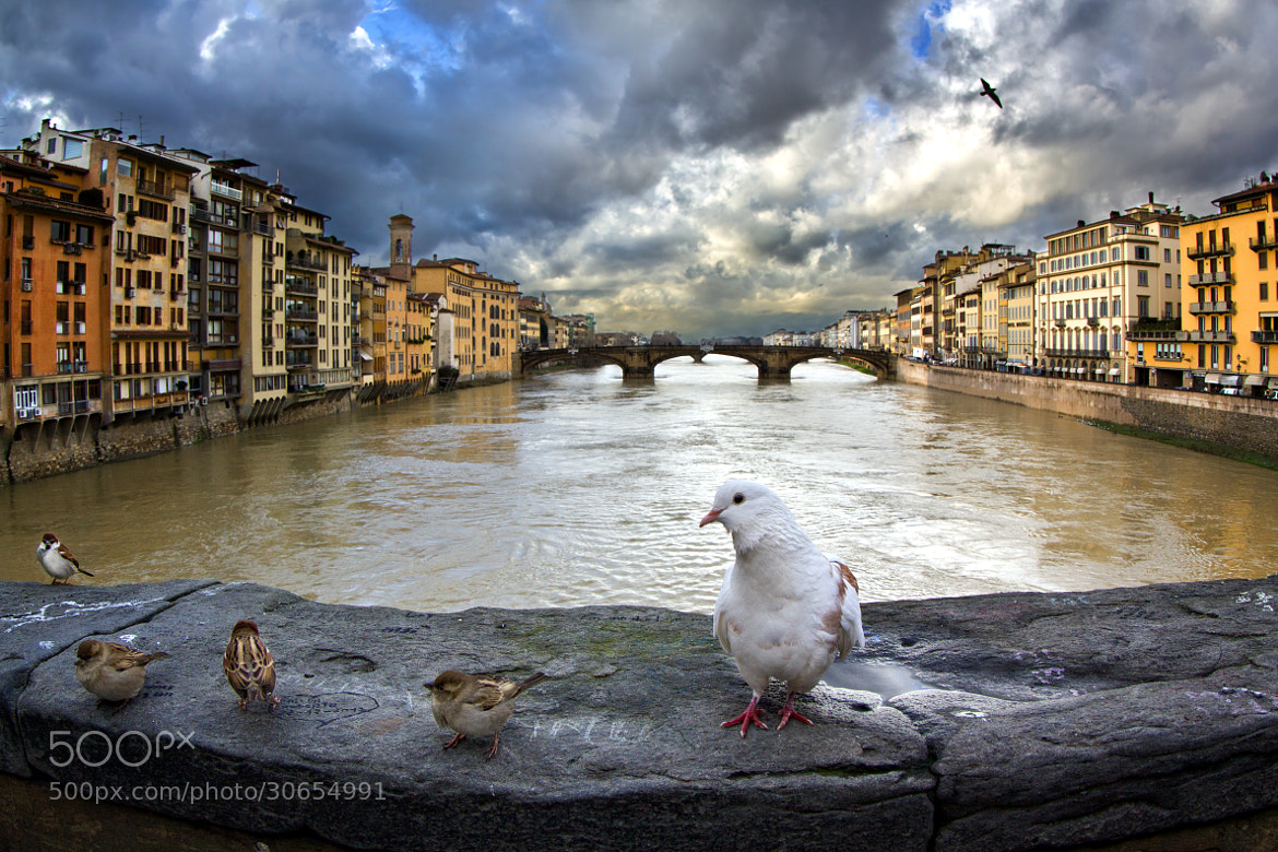 Photograph Italy - Firenze by Nebbius )) on 500px