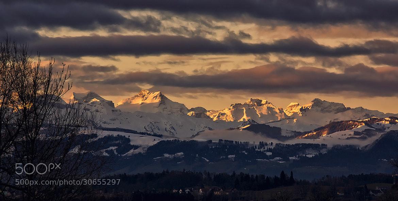 Photograph golden sunrise by Sandra Löber on 500px
