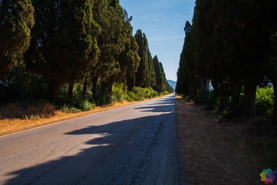 Viale dei cipressi by Fabrizio Fumagalli on 500px.com
