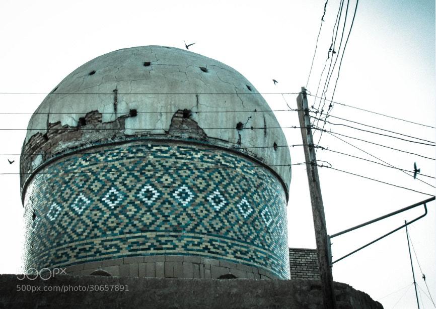 Photograph Untitled by Zahra Darivandi on 500px