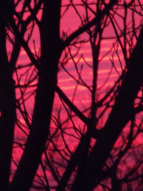 Photograph Sky on fire by Wendy Dickey on 500px