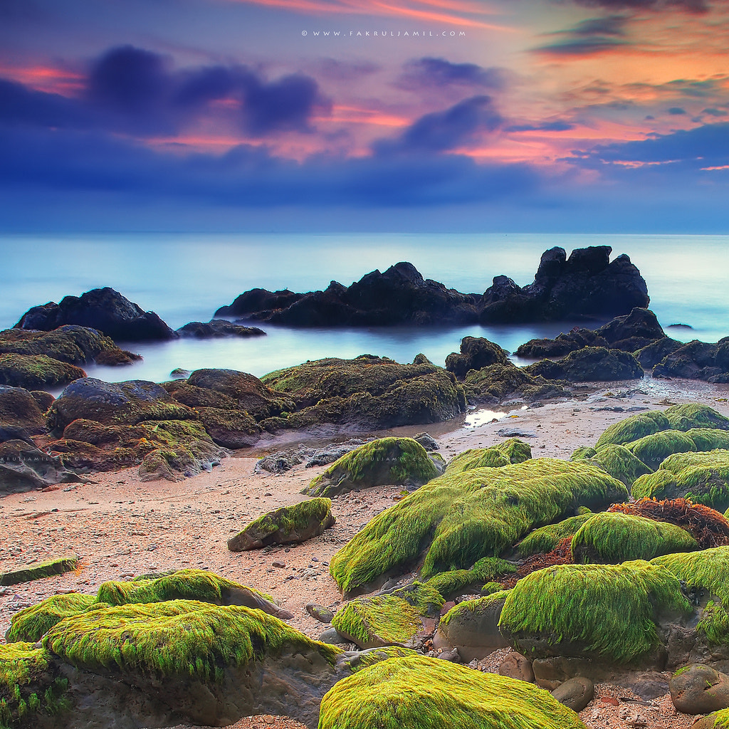 Photograph Mossy Seascape  by Fakrul Jamil on 500px