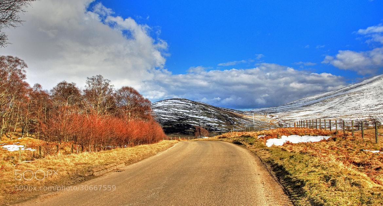Photograph Glen Esk by Hilda Murray on 500px
