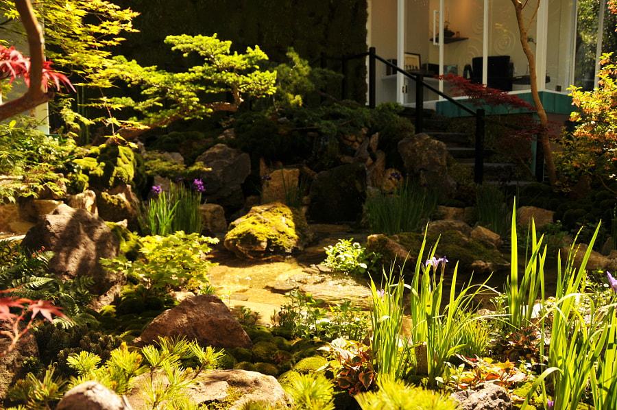 Green Switch Garden by Sandra  on 500px.com