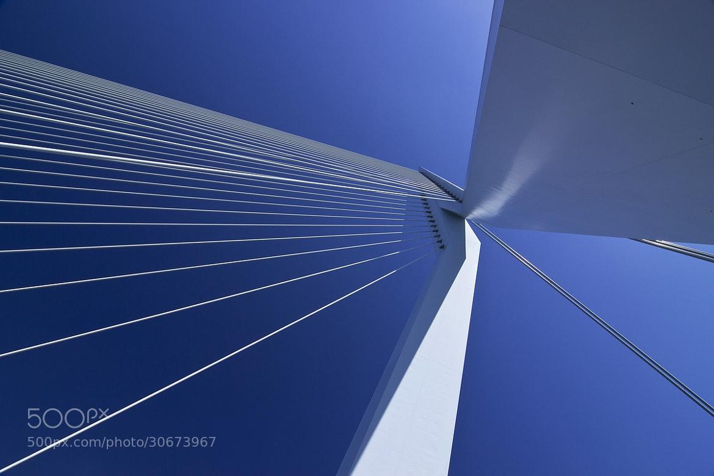 Photograph Rotterdam V by Arnd Gottschalk on 500px