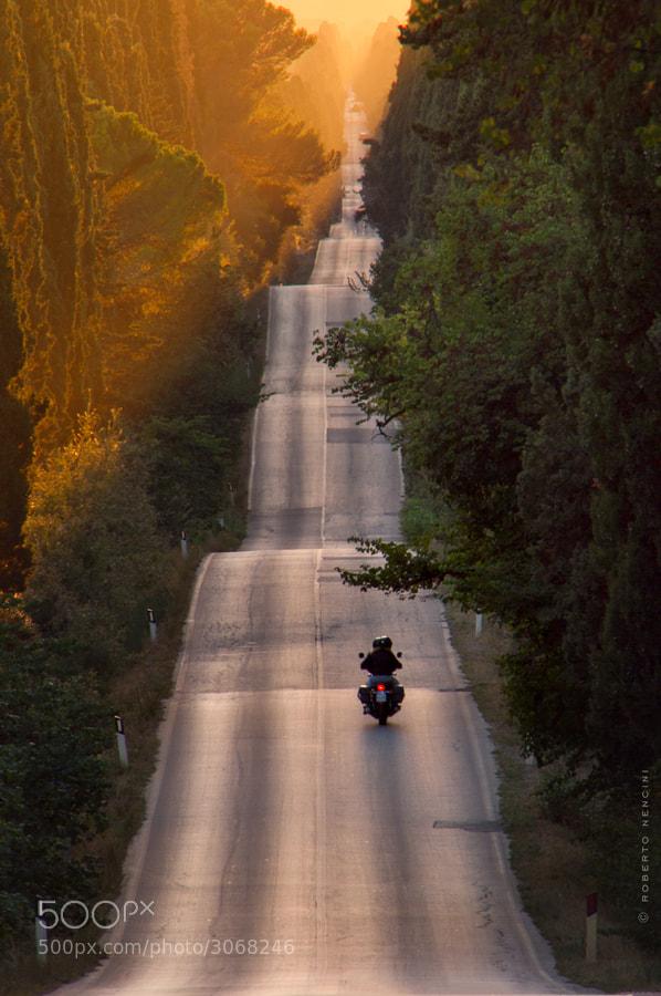 Photograph Bolgheri, i cipressi che alti e schietti... by Roberto Nencini on 500px