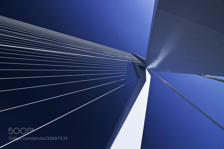 Photograph Rotterdam V - alternate version by Arnd Gottschalk on 500px