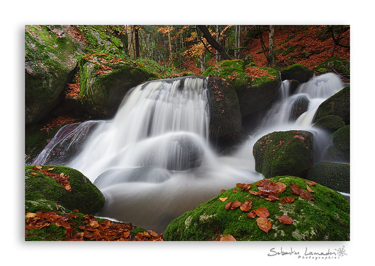 Photograph Fresh water by Sébastien Lamadon on 500px