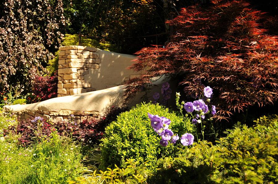 Chelsea Flower Show Silver-Gilt by Sandra  on 500px.com