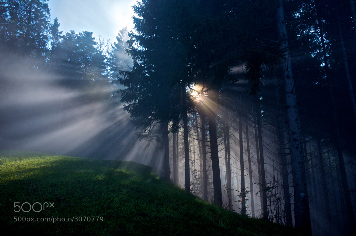 Photograph Ray of light by Dieter Wiesflecker on 500px
