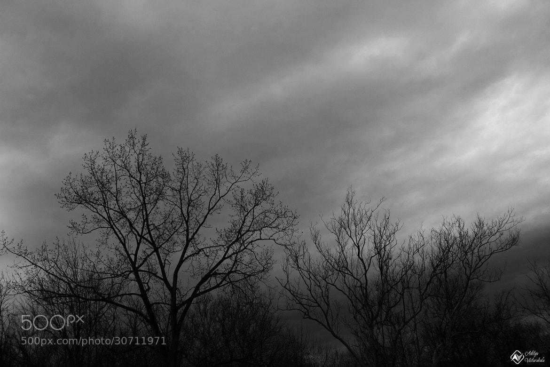 Photograph More Shades of Grey ... by Aditya Vistarakula on 500px