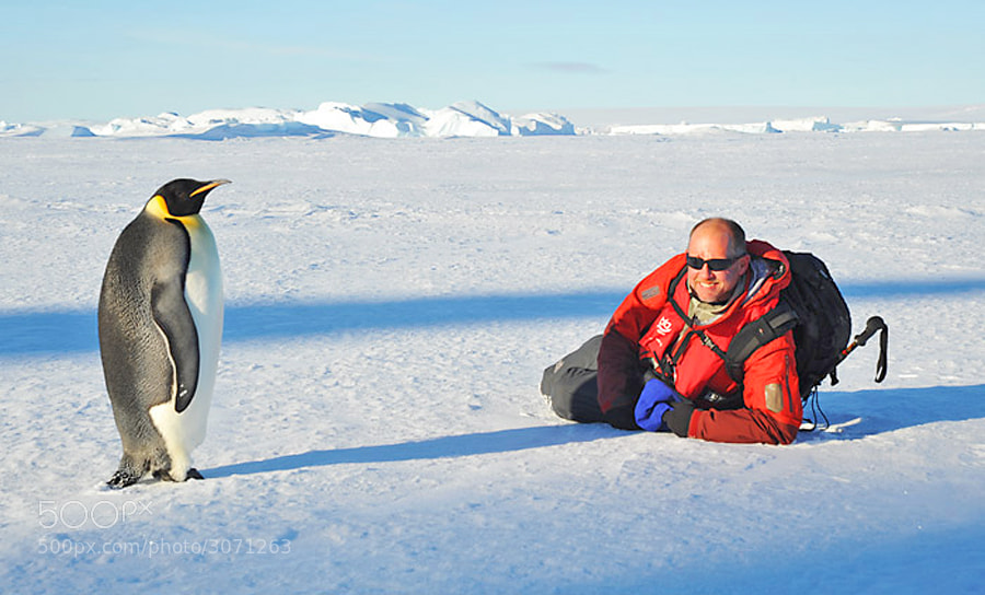 Me with one of my penguin buddies/models in Antarctica.