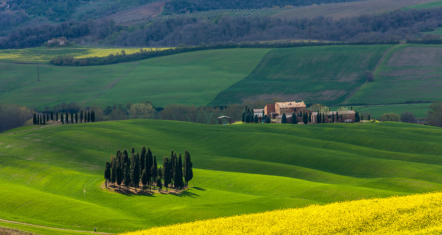 """<a href=""""http://www.hanskrusephotography.com/Workshops/Tuscany-Workshop-May-13-17/24484845_RGzMFX#!i=2451740885&k=958BfVW&lb=1&s=A"""">See a larger version here</a>  This photo was taken during a research trip for photo workshops in the spring in April 2012."""
