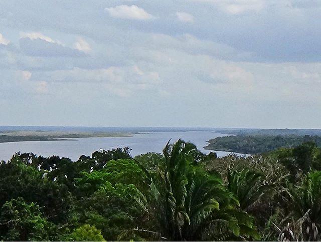In Altun Ha (Belize): Ausblick von der Spitze eines Maya-Tempels