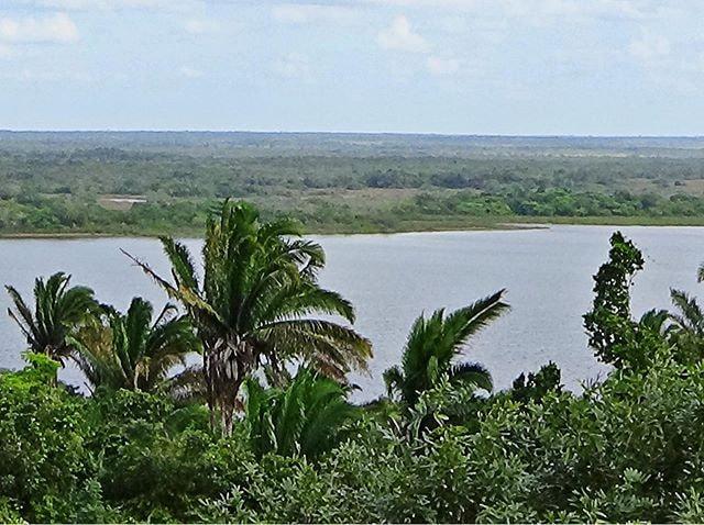 In Altun Ha (Belize): Blick hinunter von der Spitze eines Maya-Tempels