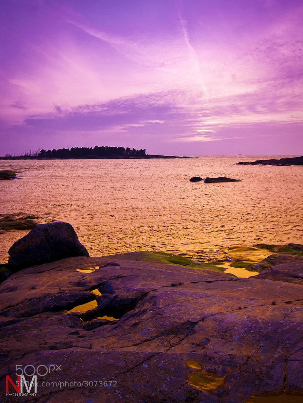 Photograph Gold and Purple by Niko Mönkkönen on 500px