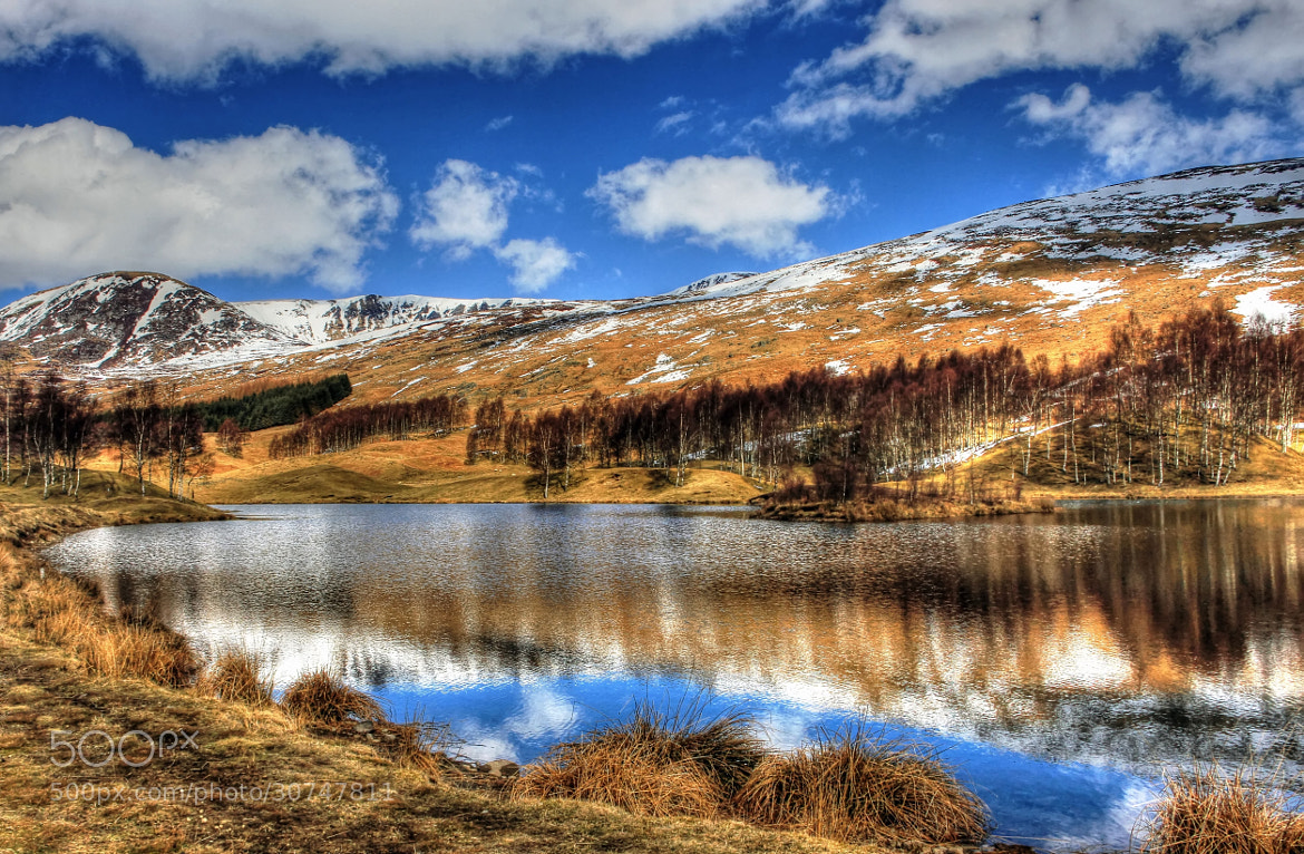 Photograph Loch Heath 3 by Hilda Murray on 500px