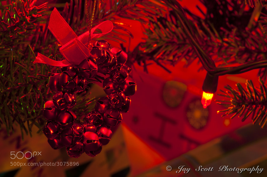 Red Bells by Jay Scott (jayscottphotography) on 500px.com