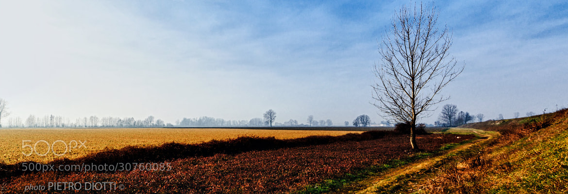 Photograph Plain 5, winter, Cremona, Italy by Pietro Diotti on 500px