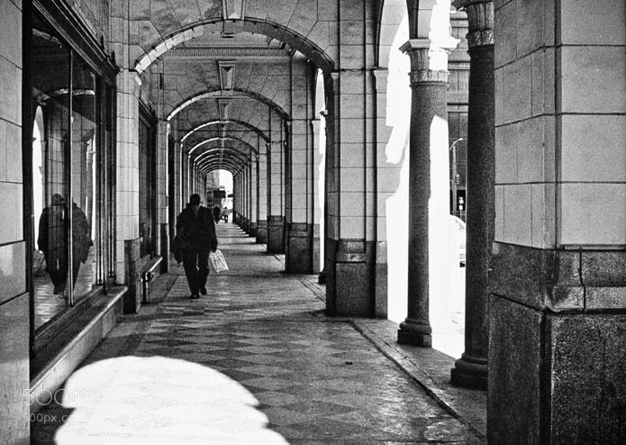 Photograph Promenade by Dan Miller on 500px