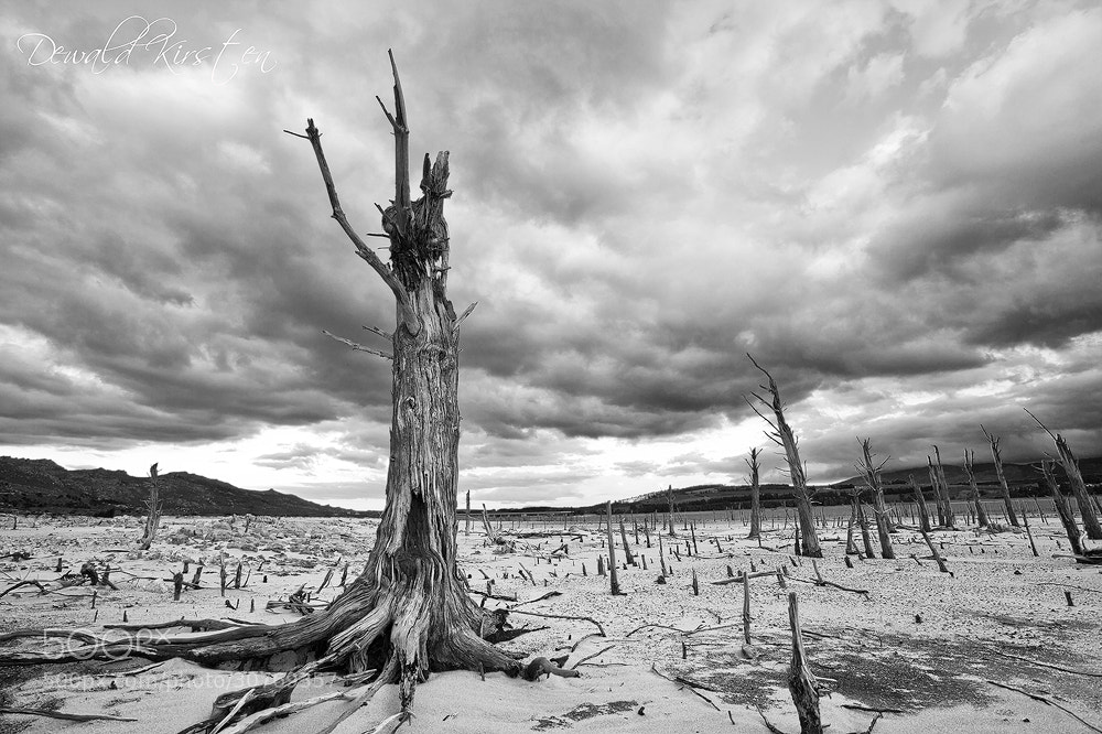 Photograph Nuclear Wasteland 2144 by Dewald Kirsten on 500px