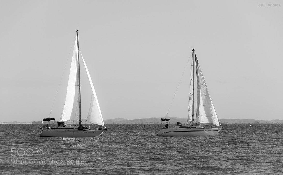 Photograph Sailing by Paulo Luft on 500px