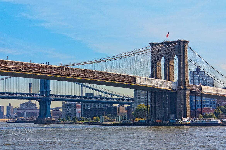 Photograph Brooklyn Bridge #2 by Stuart Crawford on 500px