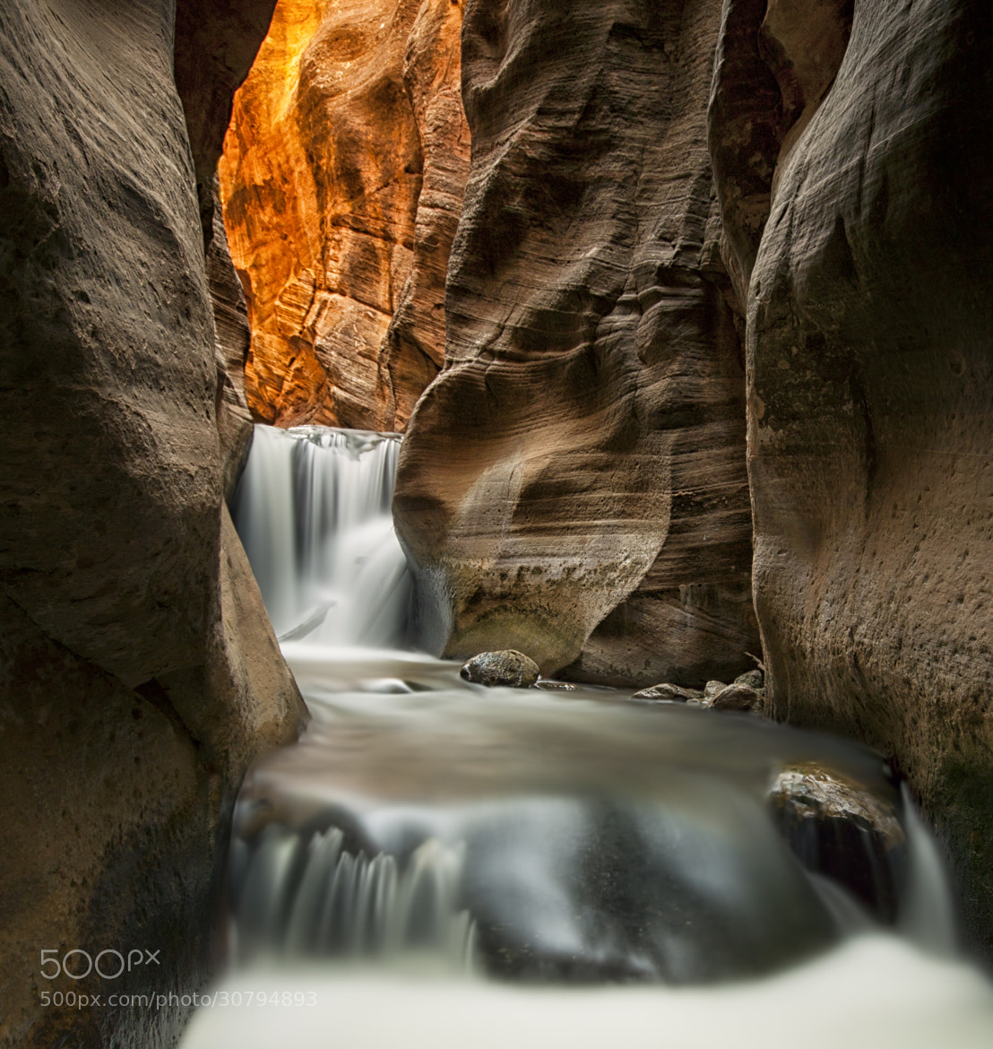 Photograph Flowing II by Danilo Faria on 500px
