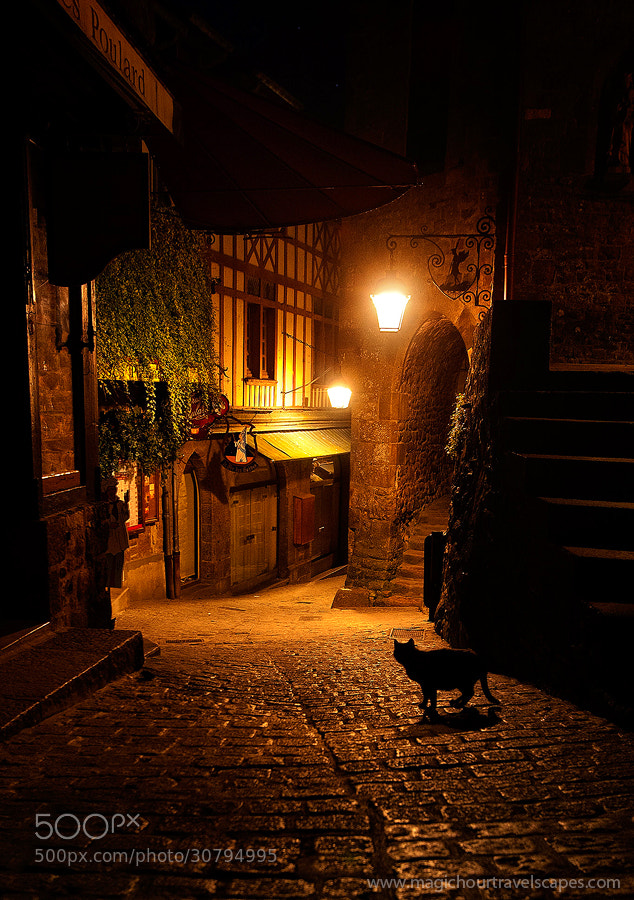 Photograph Le Chat Noir du Mont St Michel by Kah Kit Yoong on 500px