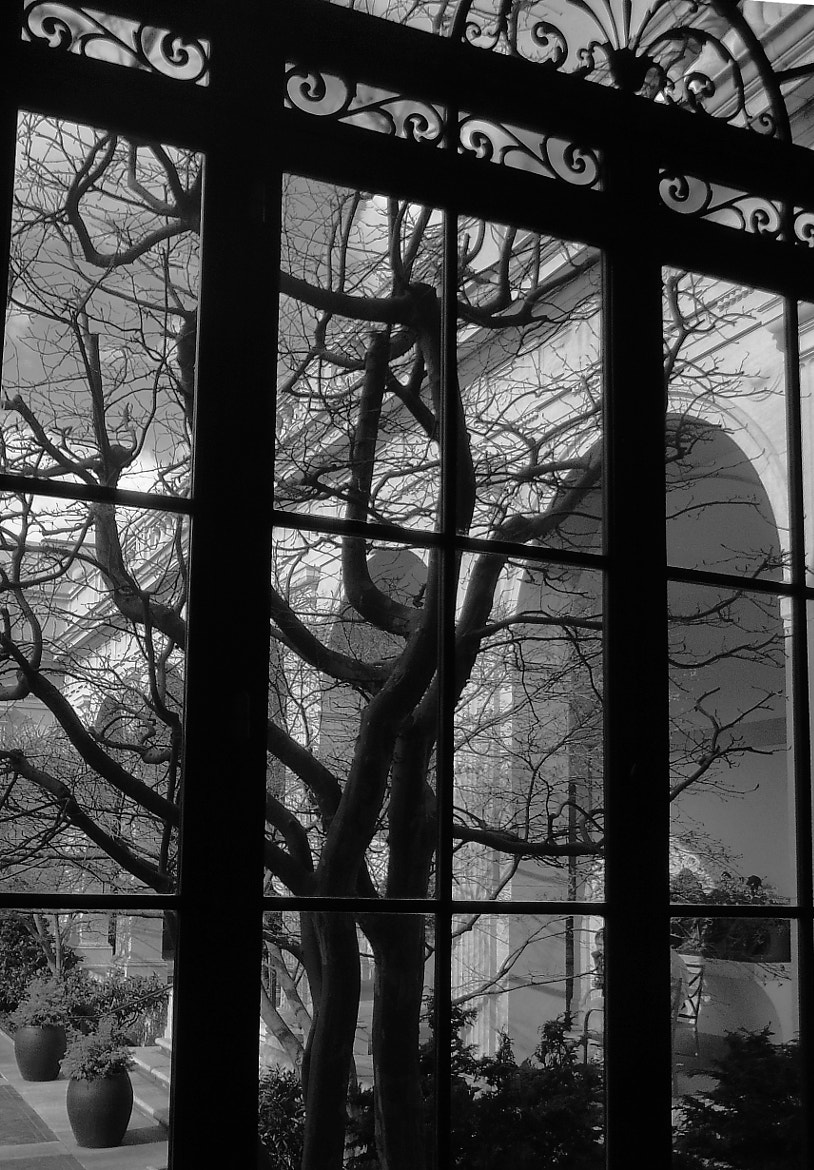 Photograph Freer Gallery Courtyard by Jeff Preletz on 500px