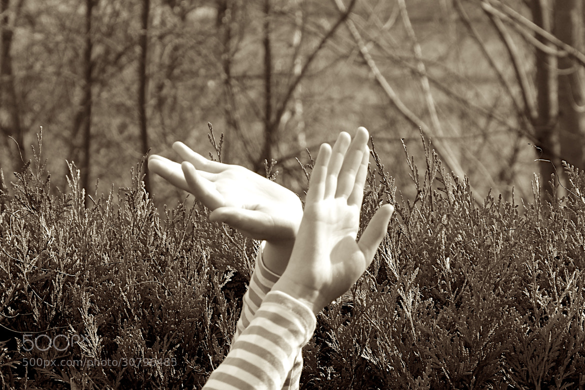 Photograph Hands of happiness. by Julien Lamour on 500px