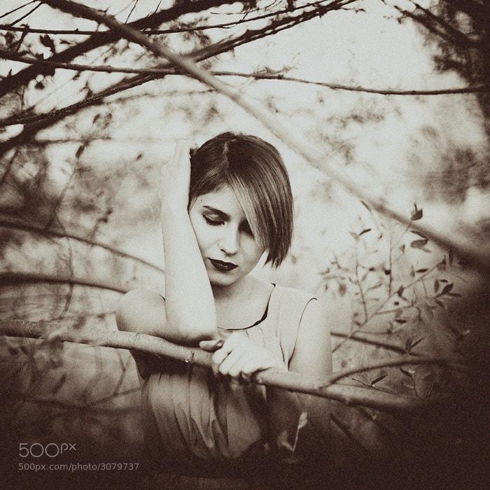 Photograph falling an autumn by esmahan özkan on 500px