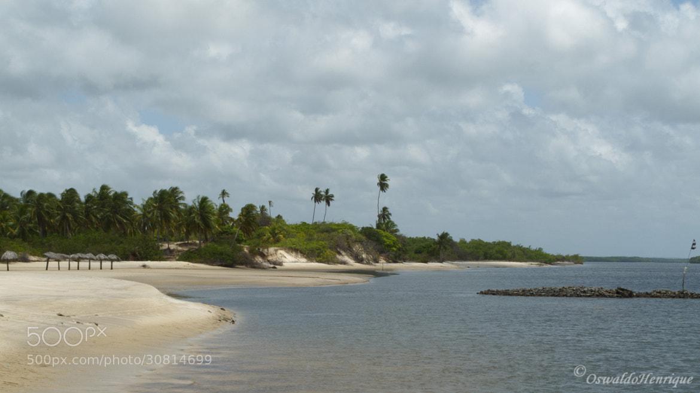 Photograph Praia da Restinga by Oswaldo Henrique on 500px