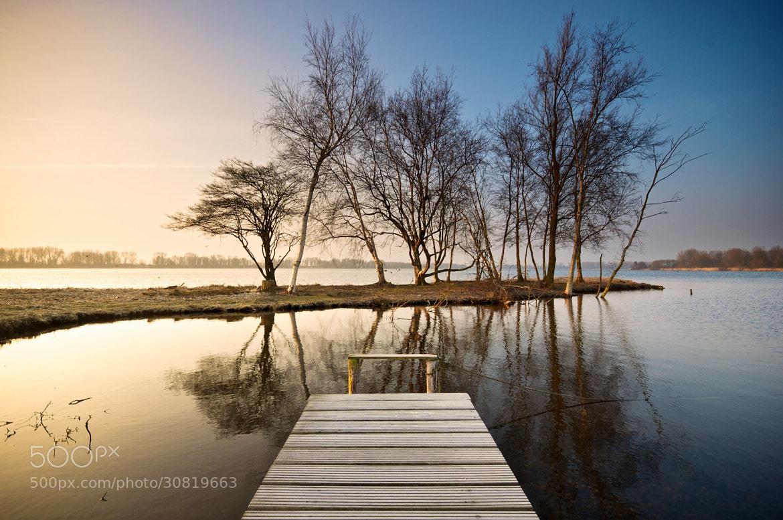 Photograph Birch Island by Martijn van der Nat on 500px