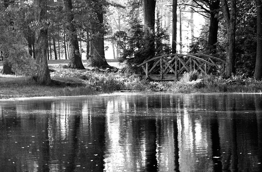 Pineland footbridge