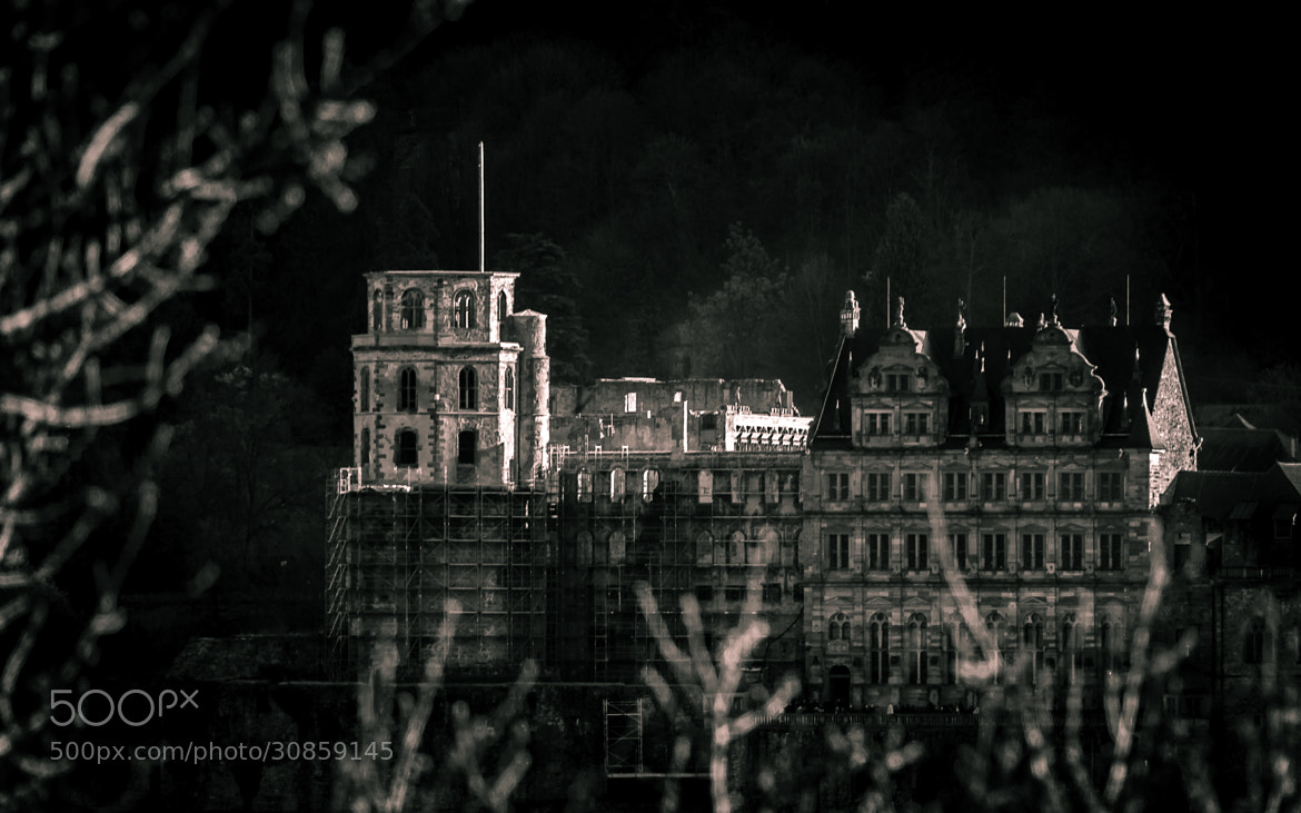 Photograph Heidelberg Castle by Philip Hoth on 500px
