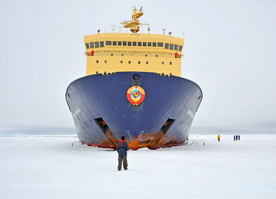 Just getting there can be interesting. This is the Russian icebreaker Kapitan Khlebnikov (Hlebnikov)  parked in the ice in the Weddell Sea, Antarctica