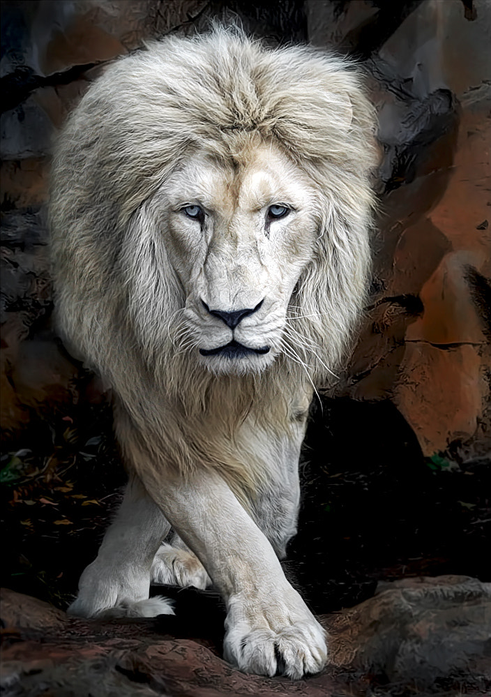 Photograph Catwalk by Klaus Wiese on 500px