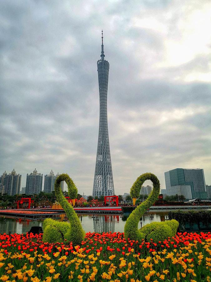 广州塔 by 谜一样的雨林  on 500px.com