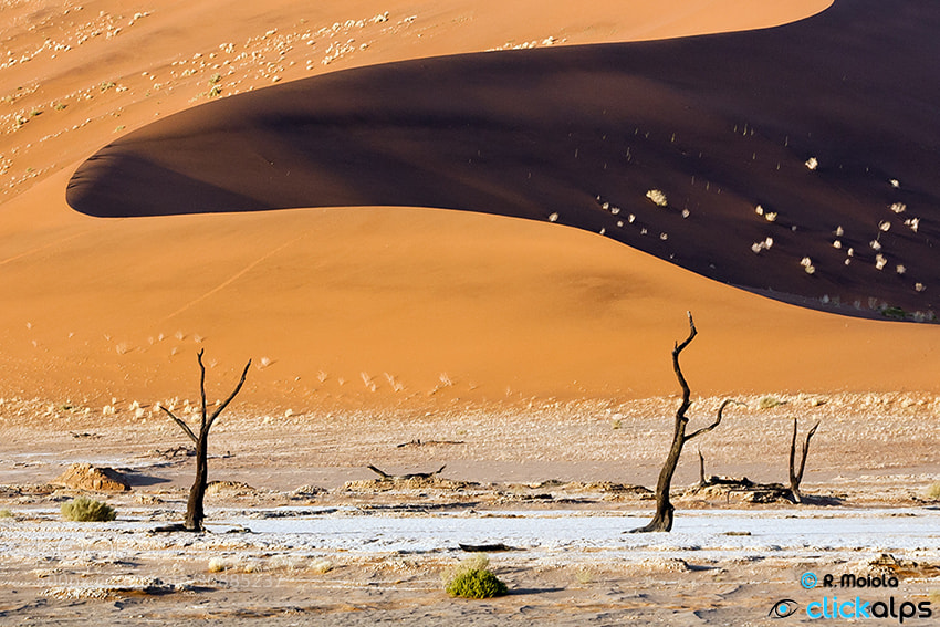 Photograph Dune 45 by Roberto Sysa Moiola on 500px