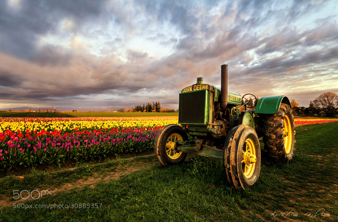 Photograph Hard Day's Nights by Kristina Wilson on 500px