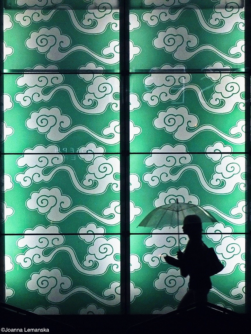 Photograph Green pattern by Joanna Lemanska on 500px
