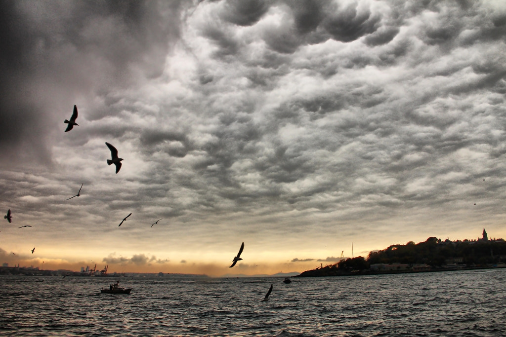 Photograph Bosphorus by Ibrahim YILDIZ on 500px