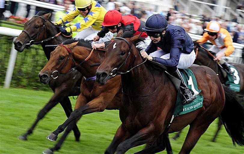 Online Elite Horse Racing Tips in UK